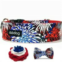 Fireworks Martingale or Buckle Collars