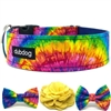 Tie-Dye Dog Collar or Martingale | Feelin' Groovy