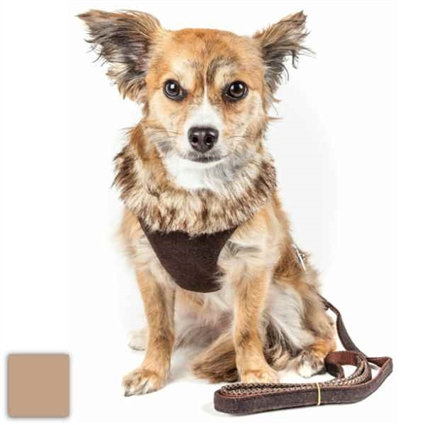 Designer Small Dog Harness | 2-In-1 | Furracious