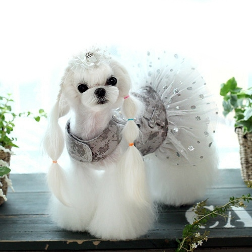 Lavish Lady Small Dog Tutu Dress