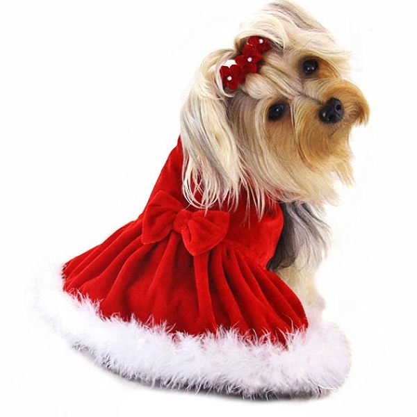 Alternative Views: - Elegant Red Velvet Christmas Dog Dress