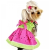 Watermelon Dog Dress for Small Dogs