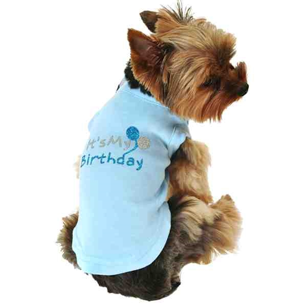 This Birthday Shirt For The