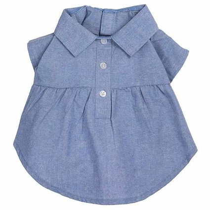 Casual Chambray Dog Dress