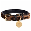 Wild One Padded Leather Dog Collar