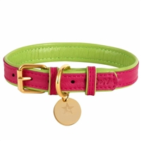 Padded Leather Dog Collar | Candy Swirl