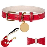 Red Padded Leather Dog Collar