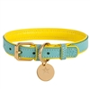 Padded Leather Dog Collar | Sunshine Baby