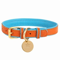 Padded Leather Dog Collar | Vibrant Sunset