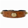 Leather Dog Collars with Riverstone Gemstones