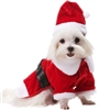Santa Paws Christmas Designer Dog Coat