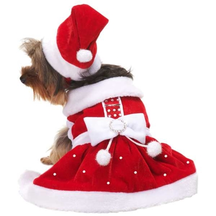 Santa Paws Christmas Designer Dog Dress