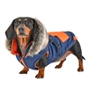 Blue and Orange Winter Dog Coat with Built-in Harness