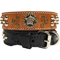 Eagle Studded Leather Dog Collars - Tapered