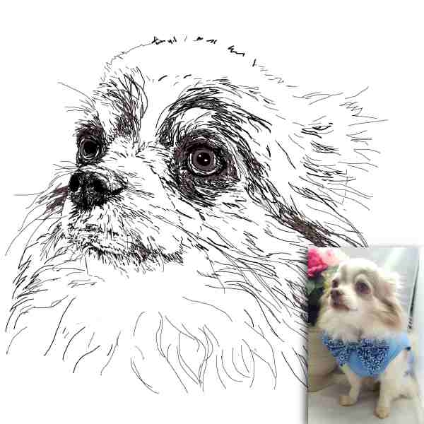 0c0eb98dd0ac Capture your pet's personality and create a timeless memory by turning your  dog, cat or other pet's photo into original sketches with these hand drawn  pet ...