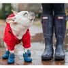 Puddle Jumpers Rubber Dog Boots