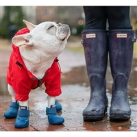 Dog Boots, dog shoes