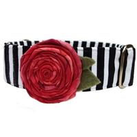 Cabaret Martingale Dog Collar