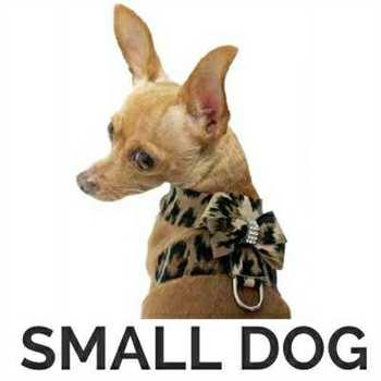 Designer Dog Harness For Small Dog