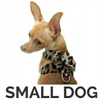 Designer Dog Harness | Leather, Small Dog, Large Dog | Snooty Pooch