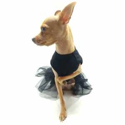 Small Dog Clothes Puppy Clothes Snooty Pooch Boutique
