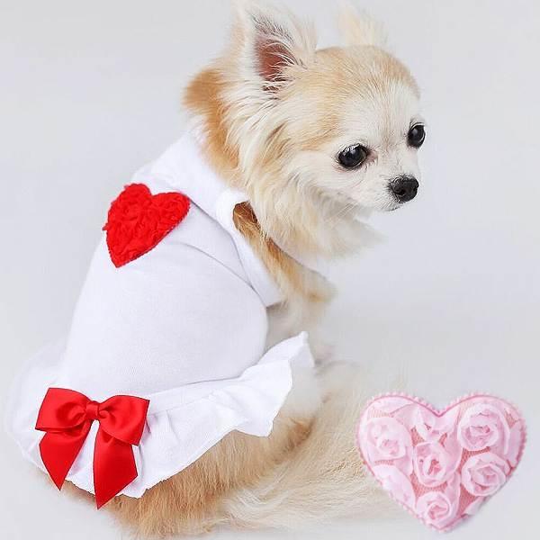 Designer Dog Clothing | Designer Dog Dress My Little Valentine