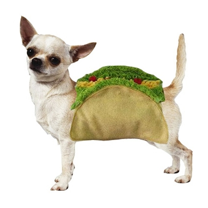 12 Doggy Tacos That Make Mexican Food Adorable |Taco Dog Halloween Costume Pattern