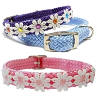 Sweet Daisy Small Dog Collar | Cat Collar
