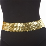 Dasha Sequin Belt