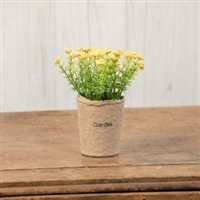 Yellow Yarrow Flower Pot
