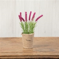Pink Lavender Flower Pot