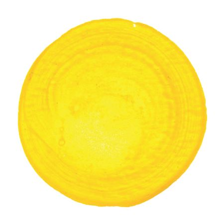 <!--(02)--> Hansa Yellow Medium (16oz HB Acrylic)