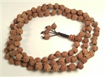 Rudraksha Seed 108 Bead Mala Prayer Beads