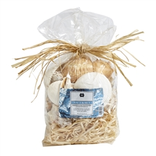 Salt & Sea potpourri 27oz.