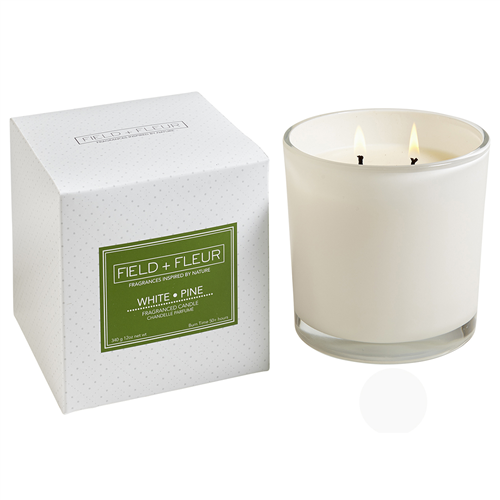 White Pine 2 wick candle in white glass 12oz.