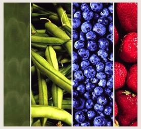 Dr brownstein | healthy diet bundle.