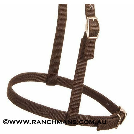 Ranchmans Adjustable Nylon Caveson Noseband