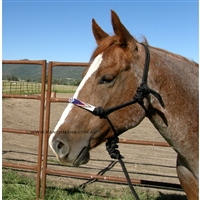 Fort Worth® Rope Halter w/Beaded Nose & Lead-Black