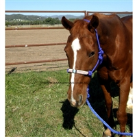 Fort Worth® Rope Halter w/Beaded Nose & Lead-Blue