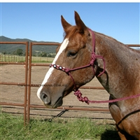 Fort Worth® Rope Halter w/Beaded Nose & Lead-Burgundy