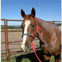 Fort Worth® Rope Halter w/Beaded Nose & Lead-Red