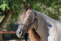 Professional's Choice® Rope Halter