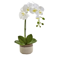 Nearly Natural - Phalaenopsis White Orchid in Ceramic Pot