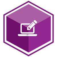 VCS Intelligent Workforce Management icon representing the Custom Report and Payroll Export Writer module. Purple hexagon with computer and pencil symbol