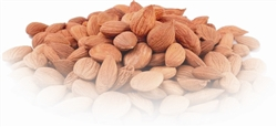 Organic Wildcrafted Apricot Kernels