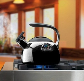 Cuisinart® PerfecTemp® Teakettle