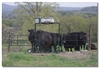 3-D Cattle Equipment, LLC