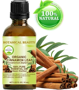 Organic Cinnamon Leaf Essential Oil Botanical Beauty