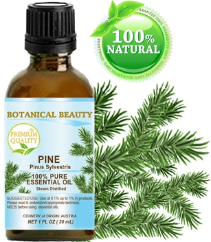 Pine Essential Oil Botanical Beauty