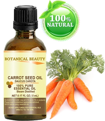 Carrot Seed Essential Oil Botanical Beauty